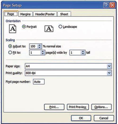 اصول چاپ كردن اطلاعات در Excel - نرم افزار حسابداری