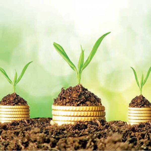 حسابداری سبز